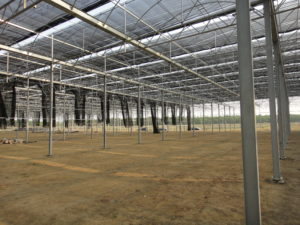 Steel frame material for greenhouse