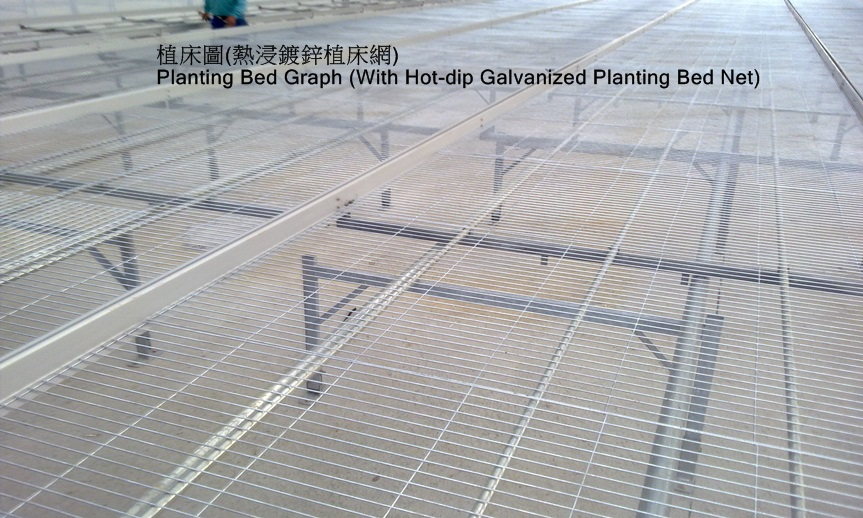 Hot-dip galvanized expended metal mesh 2