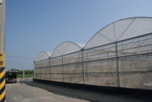 Dome Type Greenhouse