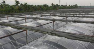 ETFE(F-clean)溫室