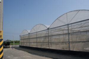 圓拱型溫室